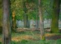 Tiergarten Hannover
