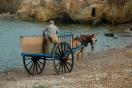Ibiza der Pferdewagen